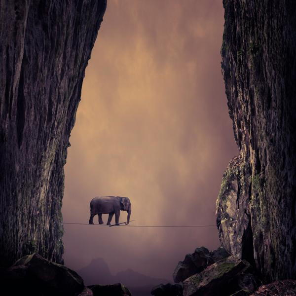 Photography by Caras Ionut